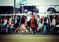 Palm Beach Polo-3