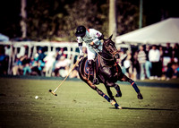 Palm Beach Polo-10