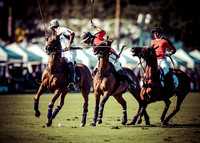Palm Beach Polo-12