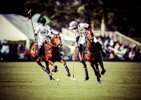 Palm Beach Polo-1