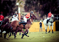 Palm Beach Polo-16